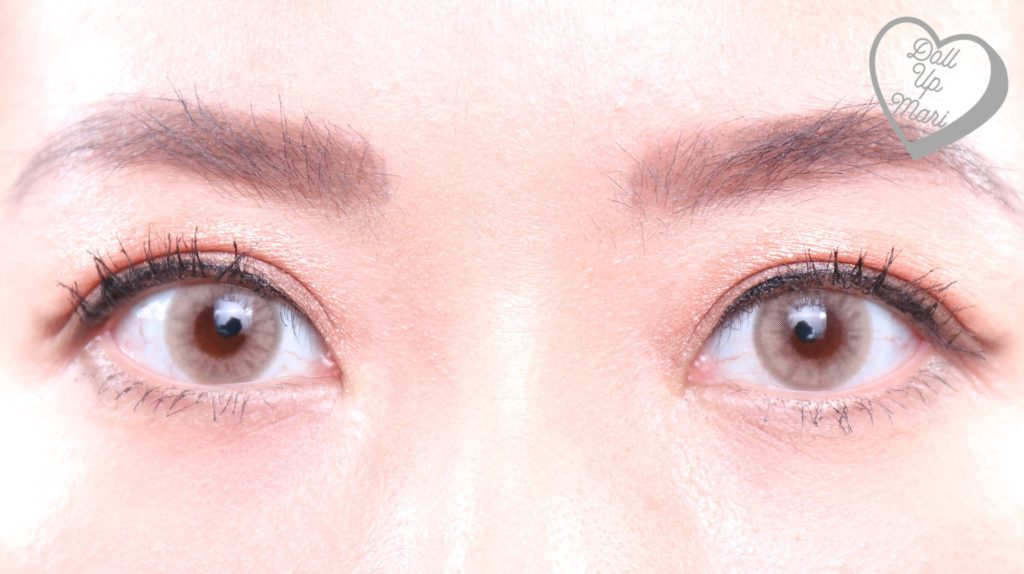 Olens Russian Smoky Contact Lens (Hazel) Two Eyes Zoom